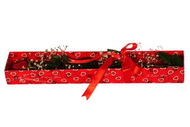 Ankaraya çiçek yolla  kutu içerisinde 1 adet kirmizi gül