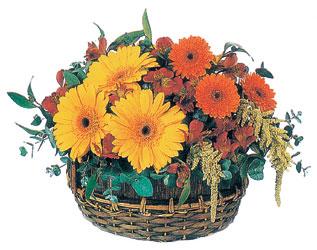 Ankara İnternetten çiçek siparişi  sepet içerisinde kir çiçekleri tanzimi