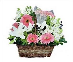 Ankara çiçek online çiçek siparişi  karisik çiçekler sepet içerisinde