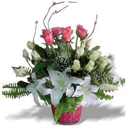Ankara yurtiçi ve yurtdışı çiçek siparişi  cam yada mika içerisinde 7 beyaz 6 kirmizi 1 dal kazablanka