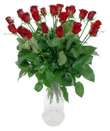 Ankaraya çiçek yolla  11 adet kimizi gülün ihtisami cam yada mika vazo modeli