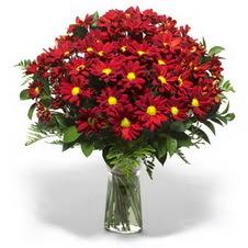 Ankara çiçek gönderme  Kir çiçekleri cam yada mika vazo içinde