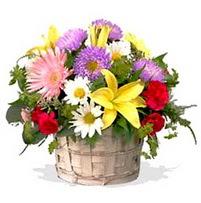 sepette karisik kir çiçekleri  Ankara anneler günü çiçek yolla  görsel sepet