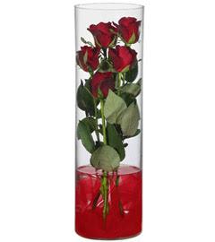 cam içerisinde 7 adet kirmizi gül  Ankara çiçek online çiçek siparişi