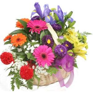 Karisik mevsim çiçekleri sepeti  Ankara çiçek servisi , çiçekçi adresleri