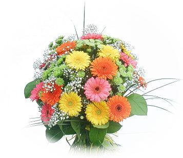 13 adet gerbera çiçegi buketi  Ankara kaliteli taze ve ucuz çiçekler