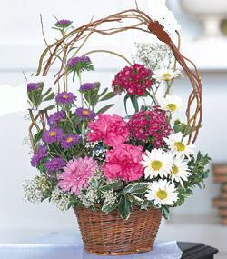 Görsel kir çiçegi sepeti mis kokulu  Ankara anneler günü çiçek yolla