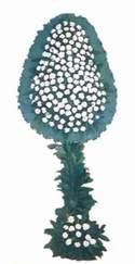 Ankara kaliteli taze ve ucuz çiçekler  dügün açilis çiçekleri  Ankara cicek , cicekci