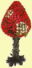 Ankara çiçekçi telefonları  dügün açilis çiçekleri  Ankara çiçekçiler