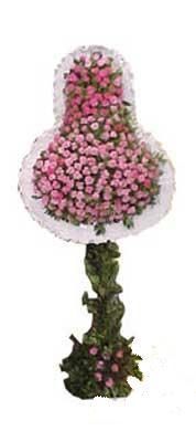 Ankara çiçek satışı  dügün açilis çiçekleri  Ankara çiçek servisi , çiçekçi adresleri