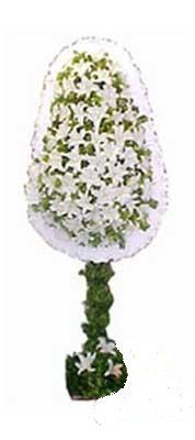 Ankara anneler günü çiçek yolla  nikah , dügün , açilis çiçek modeli  Ankara kaliteli taze ve ucuz çiçekler