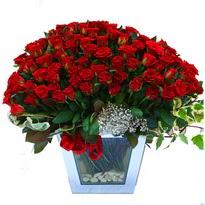 Ankara çiçek online çiçek siparişi   101 adet kirmizi gül aranjmani