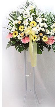 Ankara kaliteli taze ve ucuz çiçekler   perförje çiçegi dügün çiçekleri
