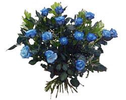 Ankarada çiçek gönderme sitemiz güvenlidir  9 mavi gül güzel bir buket
