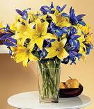 Ankara çiçek siparişi sitesi  Lilyum ve mevsim  çiçegi özel