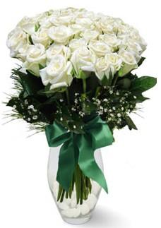 19 adet essiz kalitede beyaz gül  Ankara çiçek online çiçek siparişi