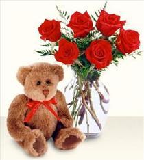 cam vazo 6 adet kirmizi gül 15 cm pelus ayi  Ankara 14 şubat sevgililer günü çiçek