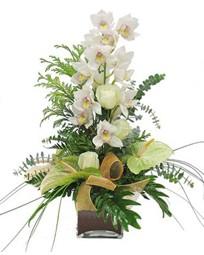Ankara çiçek siparişi vermek  cam vazo içerisinde 1 dal orkide çiçegi