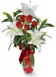 Ankara çiçek mağazası , çiçekçi adresleri  5 adet kirmizi gül ve 3 kandil kazablanka