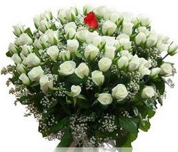 Ankara hediye sevgilime hediye çiçek  100 adet beyaz 1 adet kirmizi gül buketi