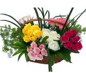 Ankara çiçek satışı  35 adet rengarenk güllerden sepet tanzimi