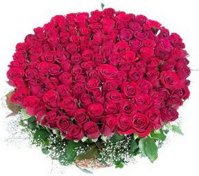Ankara uluslararası çiçek gönderme  100 adet kırmızı gülden görsel buket