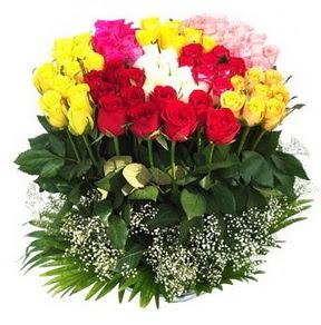 Ankara çiçek siparişi vermek  51 adet renkli güllerden aranjman tanzimi