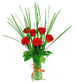Ankara ucuz çiçek gönder  6 adet kırmızı güllerden vazo çiçeği