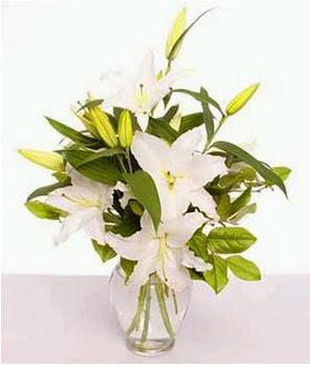Ankara çiçekçi telefonları  2 dal cazablanca vazo çiçeği