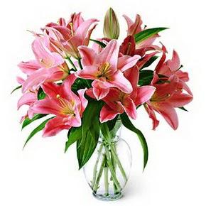 3 dal kazablanka görsel vazosu  Ankara çiçek servisi , çiçekçi adresleri