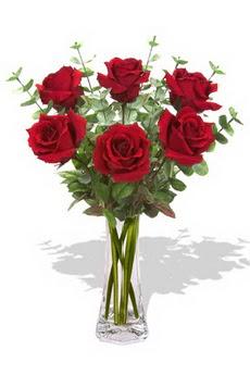 Ankara 14 şubat sevgililer günü çiçek  6 kırmızı gül vazosu