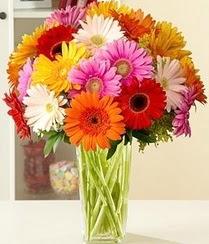 Ankara internetten çiçek siparişi  15 adet gerbera çiçek vazosu