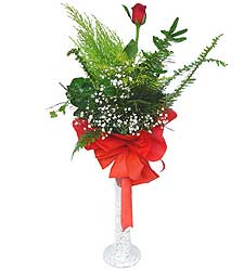 Ankara çiçek siparişi sitesi  Cam vazoda masum tek gül