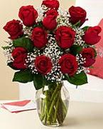 Sevgilime hediye 9 adet 1.ci kalite gül  Ankara çiçek siparişi sitesi