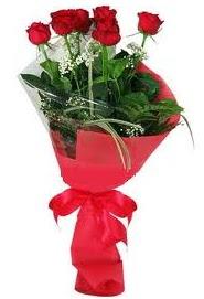 Çiçek yolla sitesinden 7 adet kırmızı gül  Ankara hediye sevgilime hediye çiçek