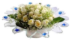 Ankara çiçekçiler  11 adet Beyaz güller özel cam tanzim