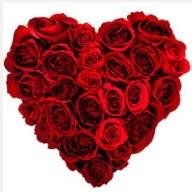 Ankara online çiçekçi , çiçek siparişi  19 adet kırmızı gülden kalp tanzimi
