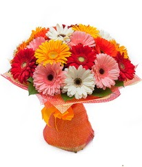 Renkli gerbera buketi  Ankara çiçek siparişi sitesi