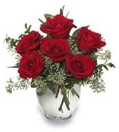 Vazo içerisinde 5 adet kırmızı gül  Ankara 14 şubat sevgililer günü çiçek