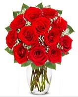 12 adet vazoda kıpkırmızı gül  Ankara güvenli kaliteli hızlı çiçek