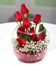 Cam fanus içerisinde 9 adet kırmızı gül  Ankara çiçek mağazası , çiçekçi adresleri