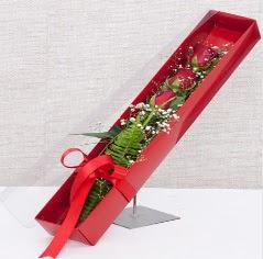 Kutu içerisinde 3 adet kırmızı gül  Ankara kaliteli taze ve ucuz çiçekler
