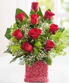 Cam içerisinde 9 adet kırmızı gül  Ankara hediye sevgilime hediye çiçek