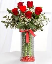Cam vazoda 5 adet kırmızı gül kalp çubuk  Ankara çiçek satışı