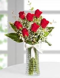 Cam vazoda 7 adet kırmızı gül  Ankara ucuz çiçek gönder