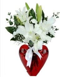 Kalp vazoda 3 kazablanka çiçeği  Ankarada çiçek gönderme sitemiz güvenlidir