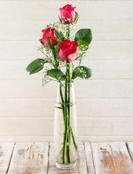 Cam içerisinde 3 kırmızı gül  Ankara çiçek , çiçekçi , çiçekçilik