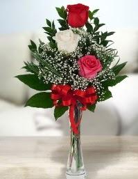 Camda 2 kırmızı 1 beyaz gül  Ankara çiçek satışı