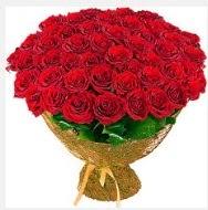 51 adet gül 1 günlüğüne indirimde  Ankaraya çiçek yolla