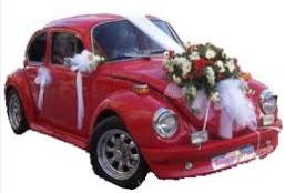 Sade gelin arabası süslemesi  Ankara çiçek siparişi vermek